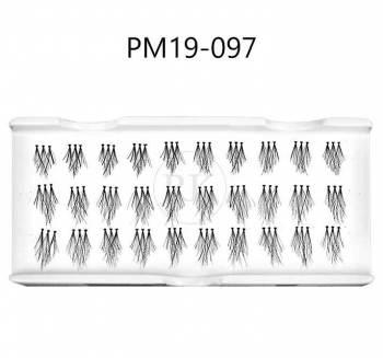 PM19-097