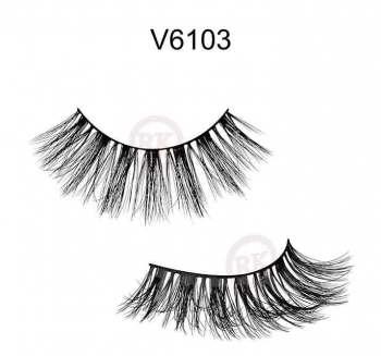 V6103