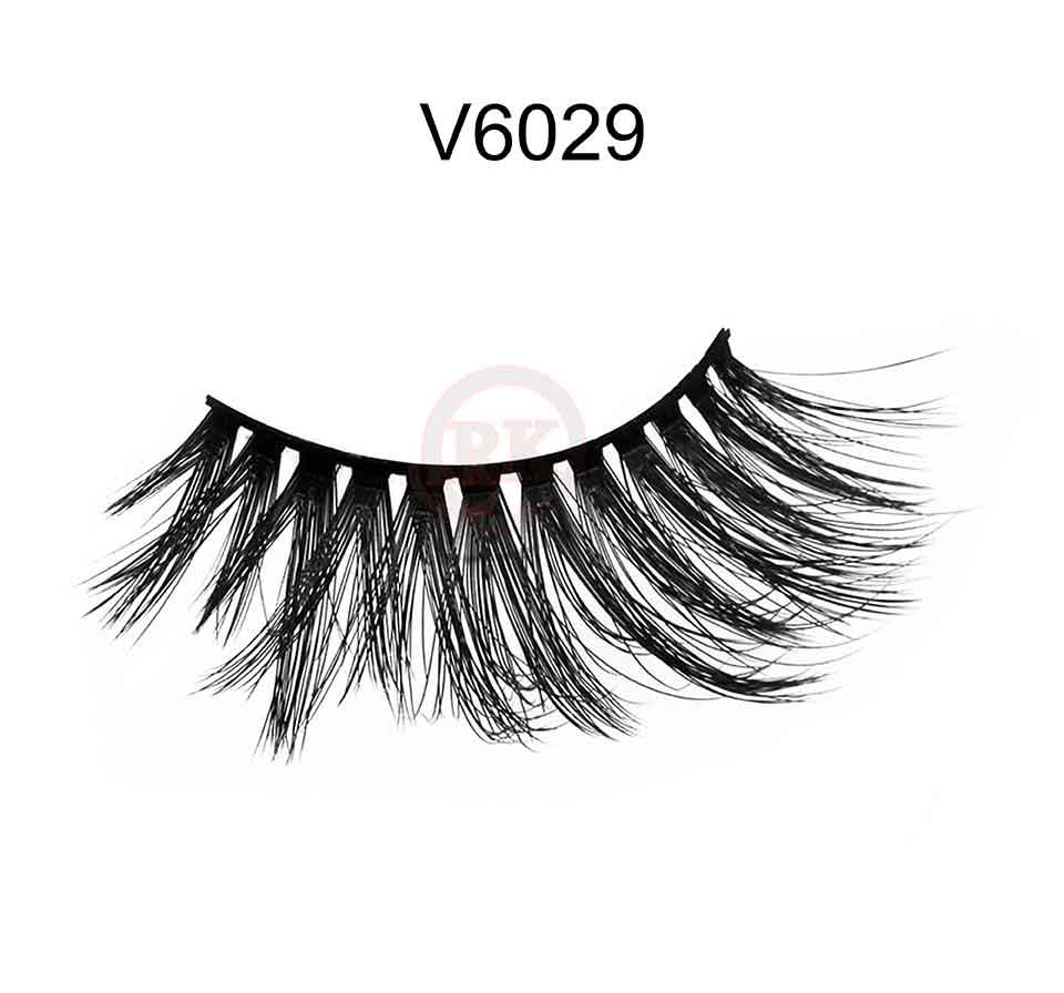 V6029