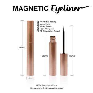 2 Magnetic-Eyeliner